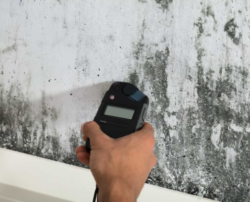 Detecting Mold on wall using tool
