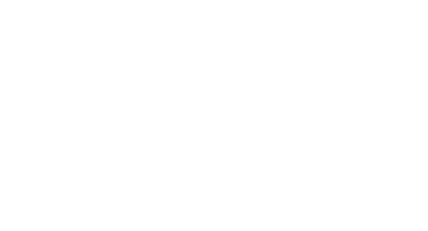 Vegas Valley Inspections