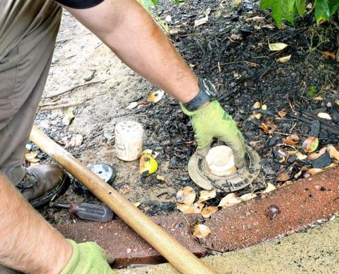 Inspecting house termites